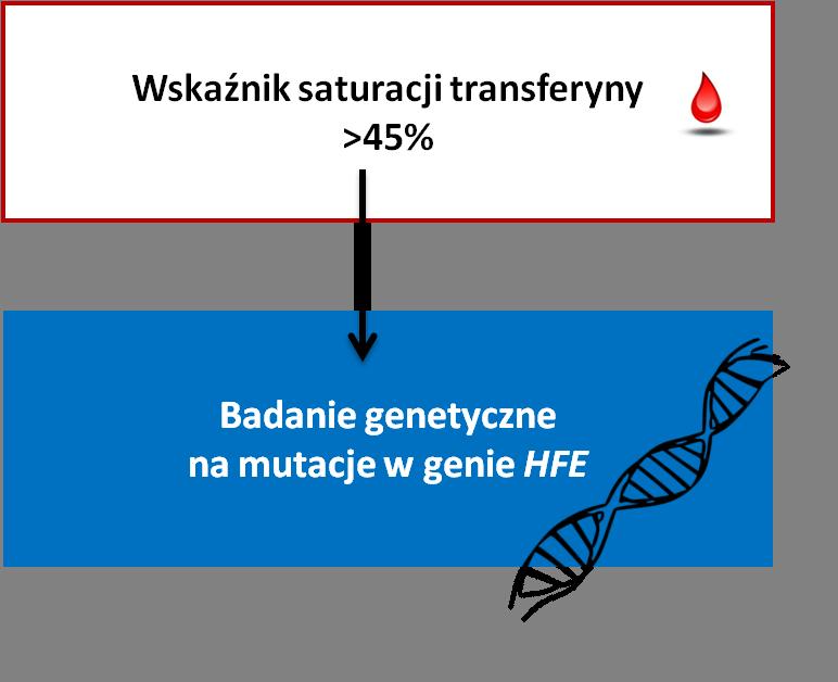 wysoki wskaźnik wysycenia transferyny